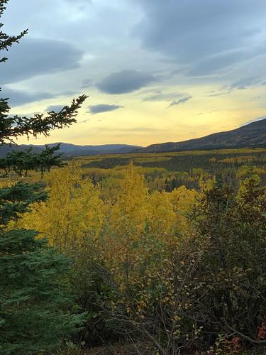 2019 09 06 - Road to Denali Alaska (166)