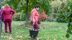 Jesenný župný guláš
