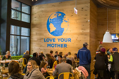"Large blue ""Love your mother"" and Planet Earth graphics on a wooden wall inside the True Food Kitchen restaurant specializing in healthy seasonal food in Chicago"