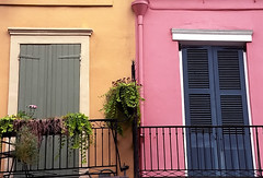 "New Orleans - French Quarter ""Contrasting Shutters"""