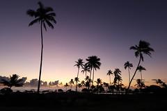 Kauai - Various Locations