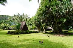 Kamokila Hawaiian Village