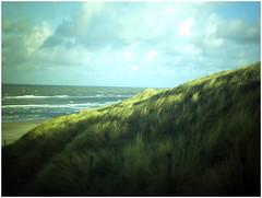 Holland_19