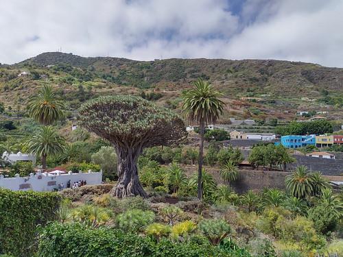 Tenerife 2019 08.07 11.40 - IMG_20190807_114018