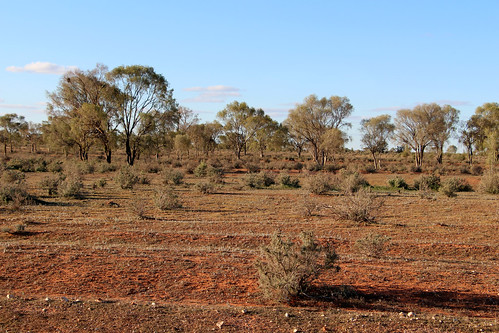 Along the Opal Miners Way