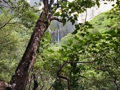 Distant Hanakāpī'ai Waterfall