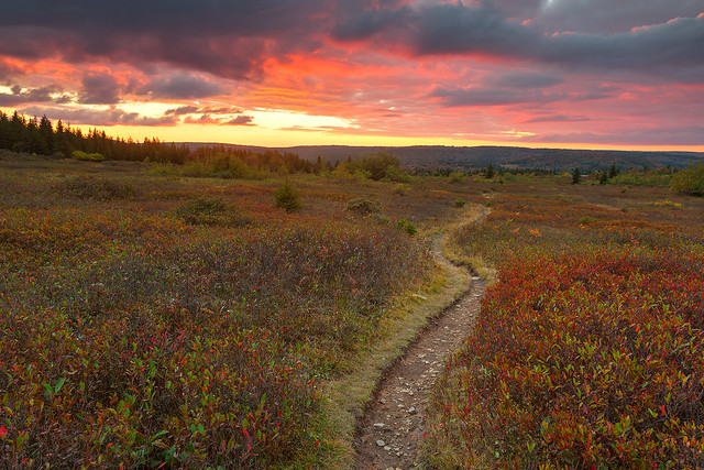 Photo:Dolly Sods Twilight Trail By Bold Frontiers