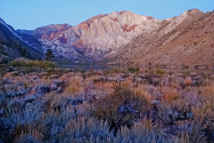 Frosty Dawn at Convict Lake, Sierra Nevada 10-19