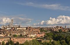 Italy - Tuscany - Siena - Duomo