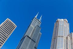 Wolkenkratzer und blauer Himmel in Downtown Chicago: der Willis Tower und der 311 South Wacker Drive