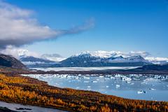 Alaska - Autumn Colors and Ice