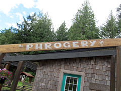 The Phrogery