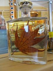 Leaf in Bottle