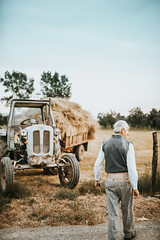 Old farmer went to work in the field on a Rakovica tractor.