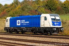 Bombardier Lokomotives & Trains