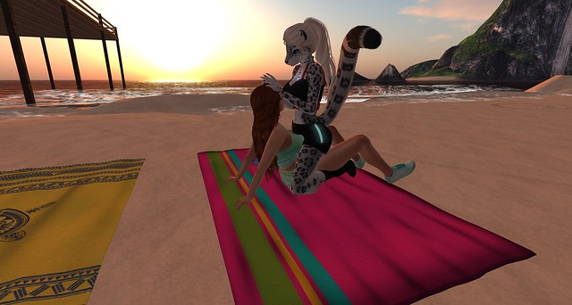 Sunset Cuddles at Stray Cat Beach