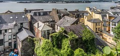 THE ROOFTOPS OF COBH JUNE 2012 [SOME ARE IN POOR CONDITION]-157339