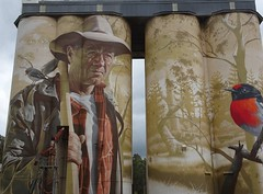 Wirrabara. Details of the beautiful silo art by Sam Bates of Melbourne.  The forester and the red capped robin. There were extensive forests beyond the town.