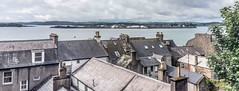 THE ROOFTOPS OF COBH JUNE 2012 [SOME ARE IN POOR CONDITION]-157338