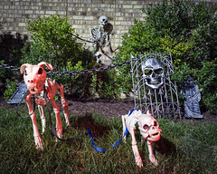 Night Neighborhood Halloween Decorations - 020