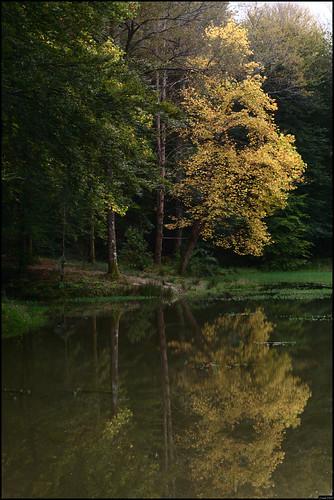 Lac de Sargaillouse