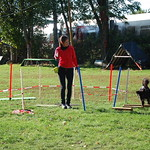 Longierseminar mit Steffi Rumpf 12.-13.10.2019