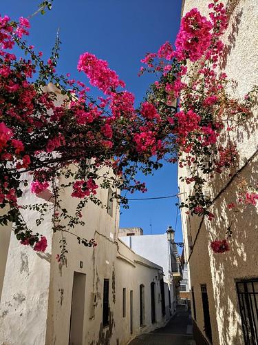 Antas Almeria Afternoon