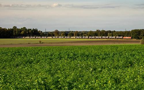 Muessen Feld RheinCargo 185 Kesselwagen