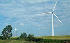 Wind turbines (Adair Wind Farm, Iowa, USA) 1