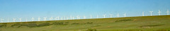 Wind turbines (Foote Creek Rim, Carbon County, Wyoming, USA) 1