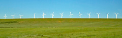 Wind turbines (Foote Creek Rim, Carbon County, Wyoming, USA) 2