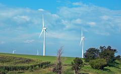 Wind turbines (Adair Wind Farm, Iowa, USA) 6