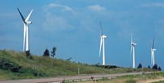 Wind turbines (Adair Wind Farm, Iowa, USA) 3