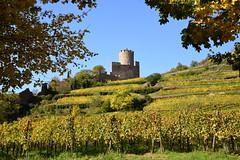 Kaysersberg(Alsace)