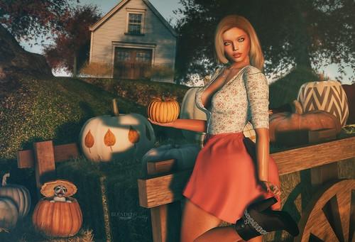 N588 Did You Call Me A Pumpkin Slut?