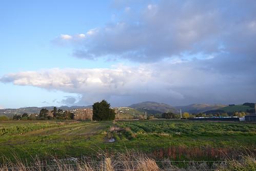 The farmland of Sparks Road
