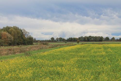 View to Roswinkel