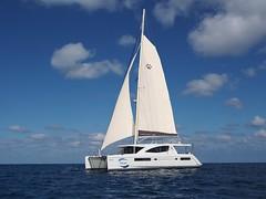 Pilar-catamaran-sailing