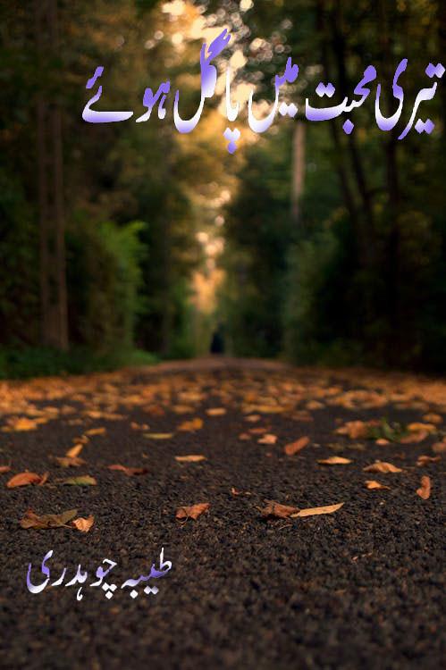 Teri Muhabbat Mai Pagal Huey Complete Novel By Tayyba Chaudhary