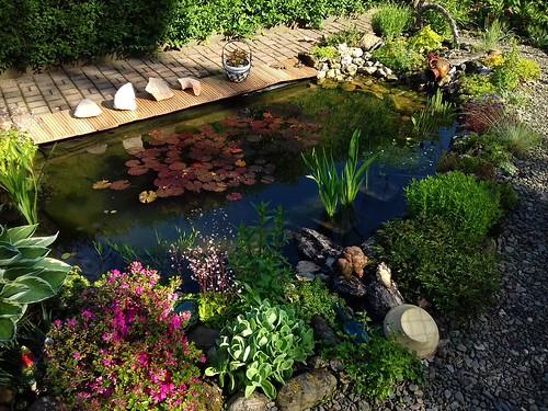 Gebietsbild: Gartenteich