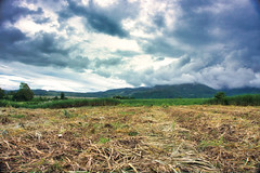 Philippine landscape