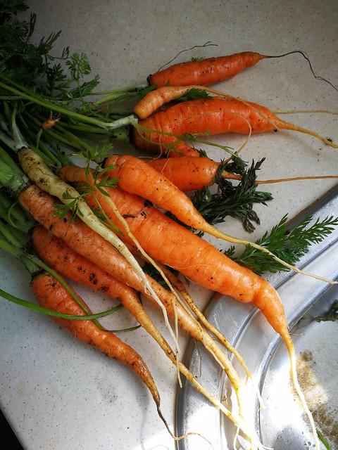 10  carrots