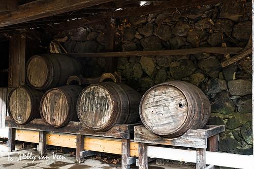 Icod de los Vinos-5922