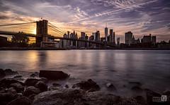 Made in New York (Puente de Brookling)
