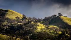 Morning Sunlight on Sunol Ridge