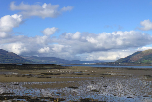 Carlingford Lough, County Down, Northern Ireland