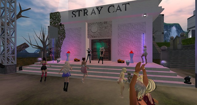 Sinful Saturday at Stray Cat Cemetary