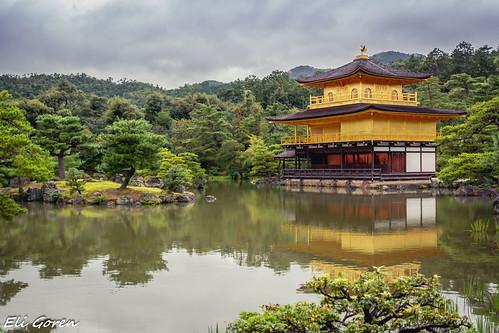 The Golden Pavillion