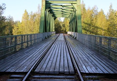 The iron railway bridge
