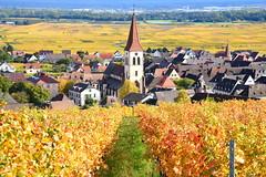 Ammerschwihr (Alsace)
